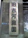 Photo_180