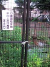 Photo_328