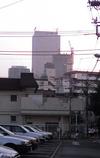 Photo_345