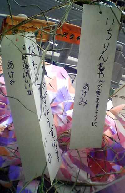 Photo_898